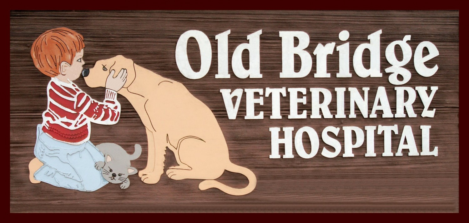 Old Bridge Veterinary Hospital Logo